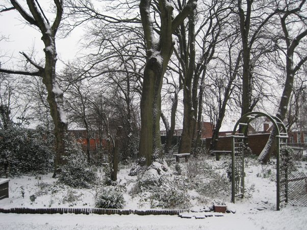 photograph of the peace garden in winter