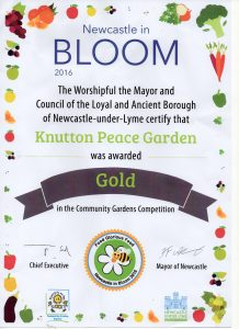 newcastle in bloom gold award 2016